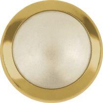 Swarovski Crystal Flatback Hotfix 2080 H Rimmed Flat Back  SS-34  (7.17mm) Crystal Cream pearl GR (F) -  144 Pcs